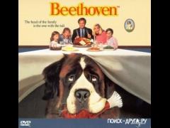Бетховен смотреть онлайн