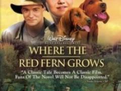 Цветок красного папоротника смотреть онлайн