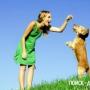 Обучаем щенка ринговой рыси