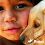 Дети и собака: как правильно себя вести?