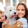 Тревожность при расставании с хозяином. Как спасти собаку от стресса?