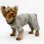 Нужна ли собаке одежда?