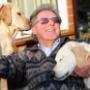 Слепым собакам частично вернули зрение