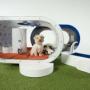 Samsung  разработал двухкомнатную будку для собак