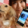 В Японии придумали мобильник для собак
