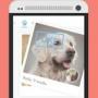 Google знакомит собак через Интернет