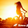 Как отучить собаку лаять на велосипеды