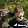 Судьбы людей и собак спасает соцпроект в США