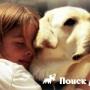 Собака спасла хозяйку, страдающую эпилепсией