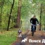 Как приучить собаку бежать рядом с велосипедом?