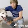 Как выбрать собаку для подростка