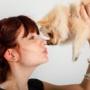 Как выбрать собаку для аллергика?