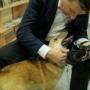 Крестным бездомного щенка стал президент Латвии