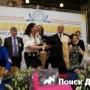В Москве состоится шоу собак-чемпионов