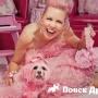 Американка покрасила собаку в розовый цвет