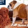 Новое полотенце для собак Soggy Doggy