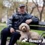 Ученые выяснили как собаки продлевают жизнь людям