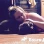 Собака помогает справиться с эпилептическими припадками