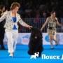 В Москве пройдет Интернациональная выставка собак