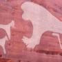 Ученые нашли древнейшее изображение израильских собак