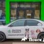 Skoda представила сервис Pet Mobil