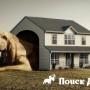 Для собак создали дома от мировых дизайнеров