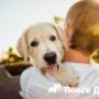 Исследование показало уровень эмпатии к собакам