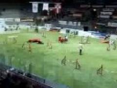 Аджилити. Чемпионат мира 2007 (Часть 5)