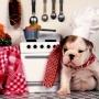 Как правильно приготовить корм для собаки