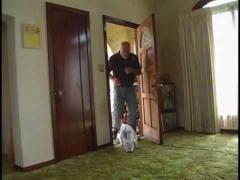Как отучить собаку выскакивать за дверь
