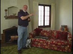 Как отучить собаку запрыгивать на мебель