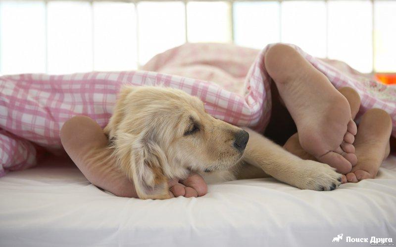 Ясплю она лижит ноги фото 455-791