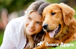 Собаки генетически «призваны» контактировать с человеком