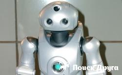 В США разработали робота-няню для собак